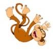 Monkey (2)
